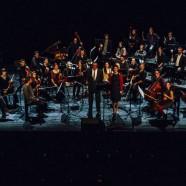 Vivo! Orchestra, entretien et chroniques !