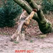 Happy 2017 !