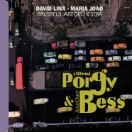 A Different Porgy and Another Bess