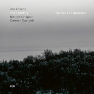 Joe Lovano Trio Tapestry: Garden of expression
