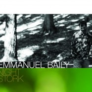 Emmanuel Baily, Night Stork
