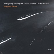 Wolfgang Muthspiel Trio, Angular Blues