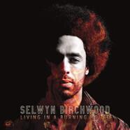 Selwyn Birchwood: Living in a Burning House