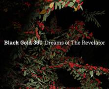 Black Gold 360 : Dreams of the Revelator