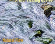 Arthur Possing : Natural Flow