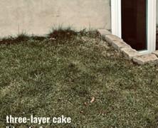 Three-Layer Cake: Stove Top