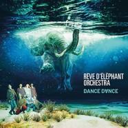 Rêve d'Éléphant Orchestra: Dance Dance