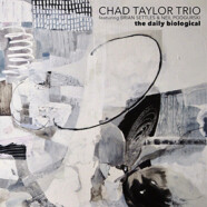 Chad Taylor Trio: The Daily Biological