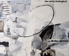 Chad Taylor Trio : The Daily Biological