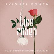 Avishai Cohen : Two Roses
