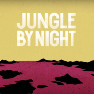 Jungle By Night, The Traveller