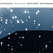 Gustavsen – Tander – Vespestad, What Was Said