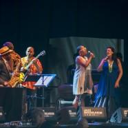 Jazz Middelheim 2015, impressions
